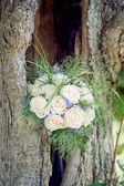 Bridal Bouquet in a Tree — Stock Photo