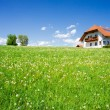 Foto Stock: Family House in Summer Landscape