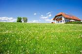 Casa da família em uma paisagem de verão — Foto Stock