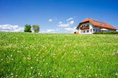 Family House in a Summer Landscape — Stok fotoğraf