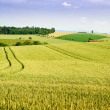 Farmland in Upper Austria — Stockfoto