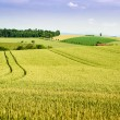 Stock Photo: Farmland in Upper Austria