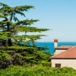 Mediterranean House and Sea — Stock Photo