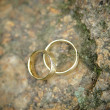 Golden Wedding Rings on a Stone — Stock Photo