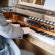 Man playing a Pipe Organ — Lizenzfreies Foto