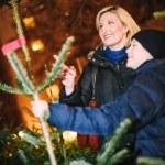 Shopping for Chrismas Tree — Stock Photo