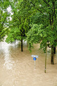 High Water on the Danube River — Stock Photo