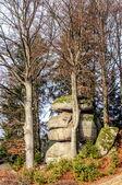Granite Stone in Upper Austria — Stock Photo