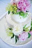 Multi level white wedding cake — Stock Photo