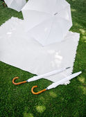 Picnic with white Accessoires — Stock Photo
