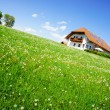House in the Country Summer — Stock Photo