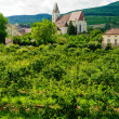 Stock Photo: Church in Wachau