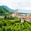 Stock Photo: Summer Landscape in Wachau