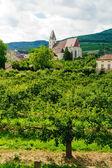 Church in Wachau — Stock Photo