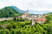 Summer Landscape in Wachau — Stock Photo