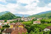 Small Village in Wachau — Stock Photo