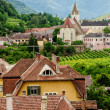Stock Photo: Over Roofs of Village