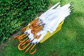 Lot of white umbrellas — Stock Photo