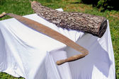 Hand saw and tree trunk — Stock Photo
