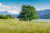 Mountains behind a summer landscape — Stock Photo