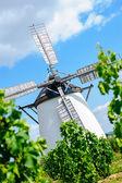 Windmill behind grape vine — Stock Photo
