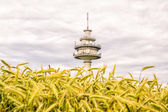 Telecommunication tower behind a field — Stock Photo