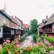 View of Alsace traditional houses — Stock Photo #43234855