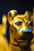 Golden Lion Head — Stock Photo
