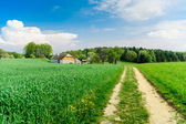 Rural Landscape in Upper Austria — Stock Photo