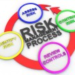 Risk managemtnt process - Lizenzfreies Foto