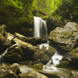 Grotto Falls — Stock Photo #17394989