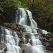 Laurel Falls in Smokies — Stock Photo #17395163