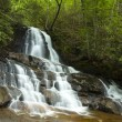 Laurel Falls in Smokies — Stock Photo #17395221