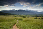 Path to the Mountains — Stock Photo