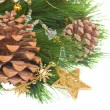 Chrismas decorations and pine cones — Stock Photo