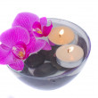 Orchids with candels — Stock Photo