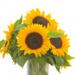 Sunflowers bouquet in vase — Stock Photo