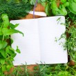 Blank notebook for recipes with herbs — Stock Photo