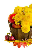 Bouquet of mums with apples — Stock Photo