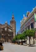 Atreet near cathedral, Seville, Spain — Stock Photo