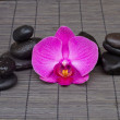 Royalty-Free Stock Photo: Massage stones and orchid