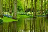 Spring garden Keukenhof — Stock Photo
