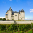 Stock Photo: Saumur castle in Loire Valley