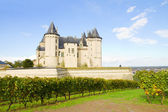 Saumur castle and vineyards — Stock Photo