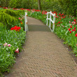 Stone walk way  in garden - Stock Photo