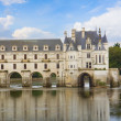 Chenonceau castle, France — Foto Stock