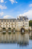 Chenonceau castle, France — Stock Photo