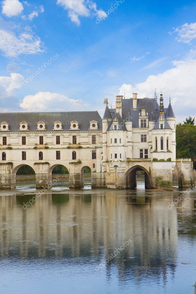 Chenonceau castle  in the Loire Valley, France — Stock Photo #16959287