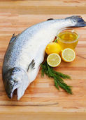 Atlantic Salmon — Stock Photo