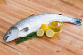 Atlantic Salmon fish — Stock Photo